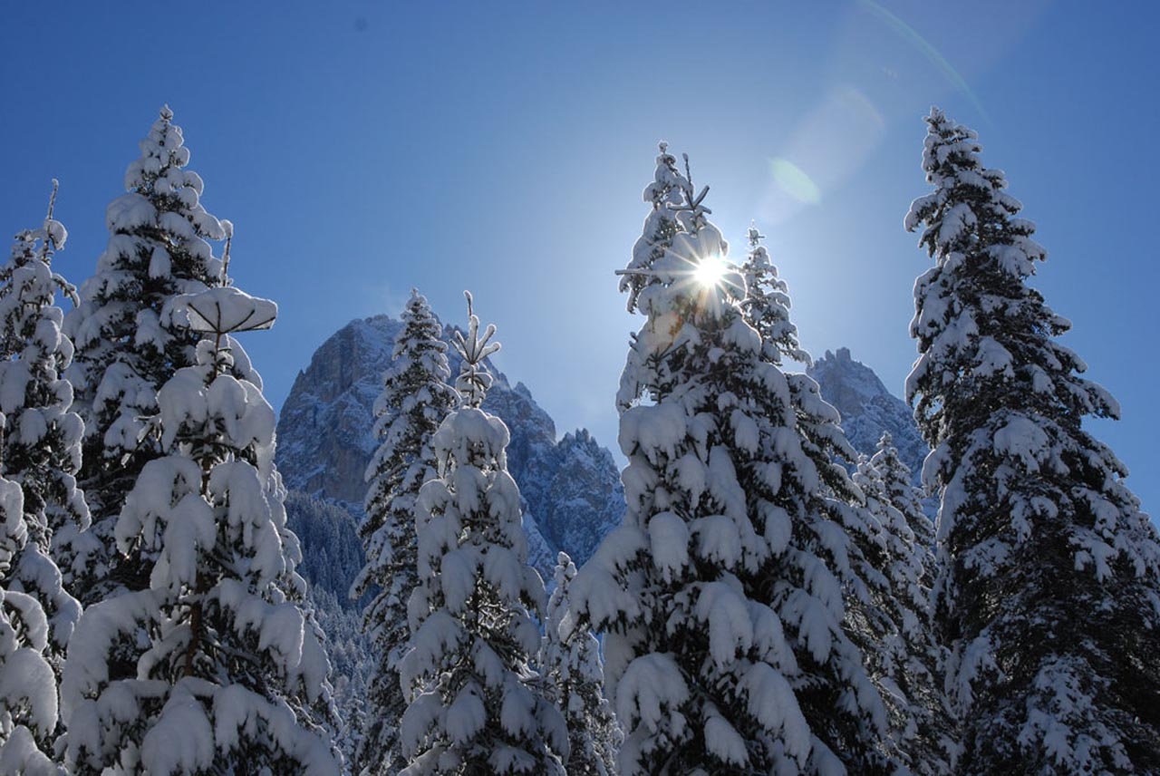 winter holiday for families in south tyrol b b for skiers
